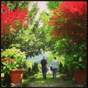 Spring in Garfagnana