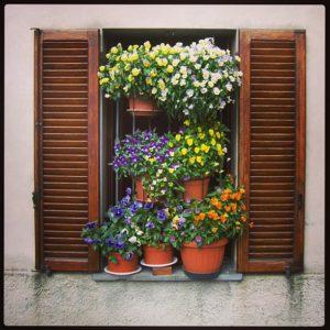 Springtime in Garfagnana