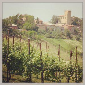 near castellerano
